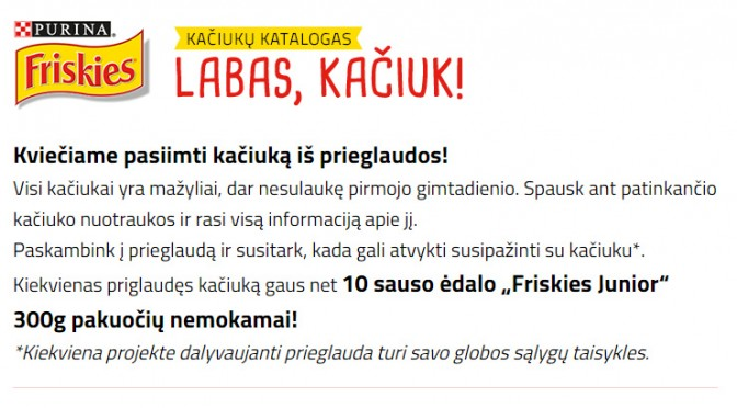 """PROJEKTAS """"LABAS KAČIUK"""""""